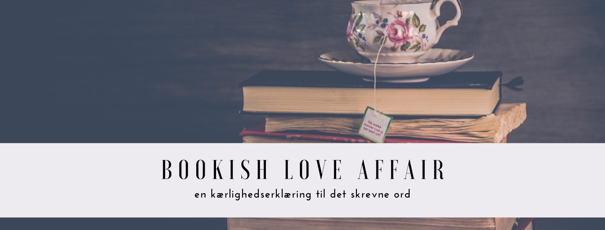 Bookish Love Affair